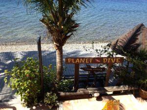 Planet Dive. We have landed!
