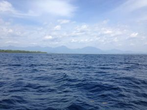 Puerto Princesa Bay, while aboard the Princess Regina on our way to go dolphin watching... but I didn't get to jump in