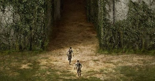 Except for the damned ending sequence which could have been better directed and played out, I really liked The Maze Runner